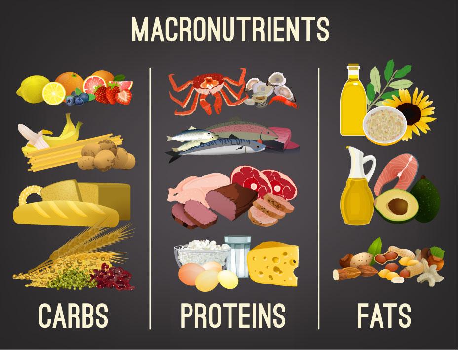 筋肉トレーニングしているのに体脂肪が減らないには食事、運動、生活習慣に問題があります。