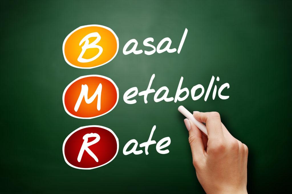 筋トレ 筋肉量 増える 基礎代謝 上がる。