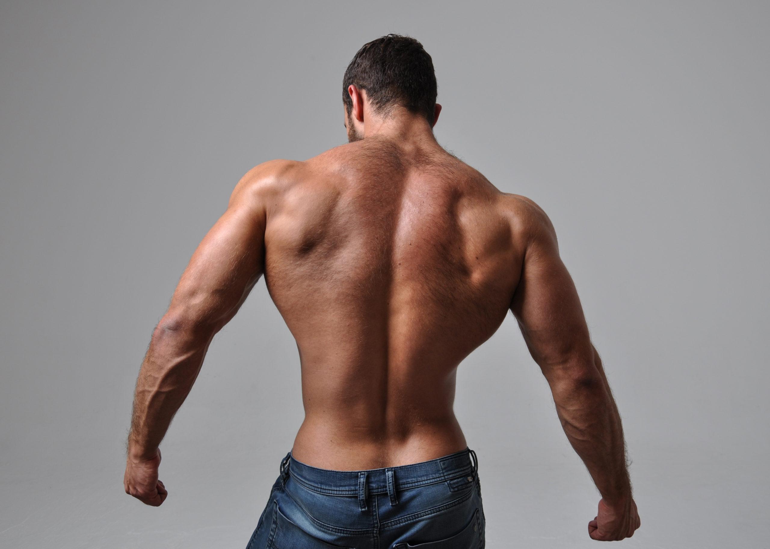 筋トレ 背筋 自重